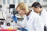 Ergonomia w laboratoriach i pomieszczeniach czystych